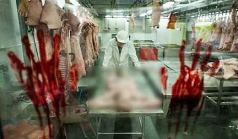 فروش گوشت انسان های مرده ۹۱