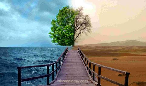محیط زیست 042