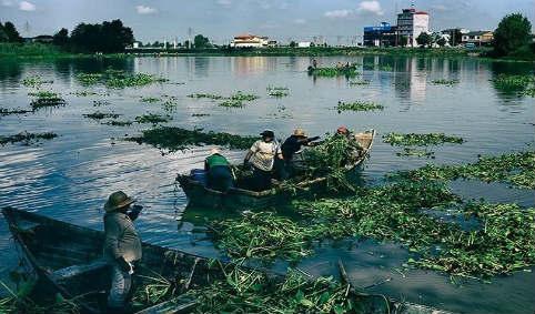 پاکسازی دریاچه عینک ۹۱